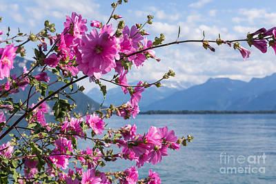 Lake Geneva Art Prints