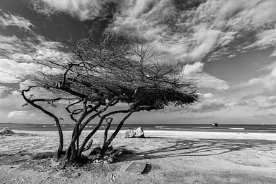 Aruba Photographs