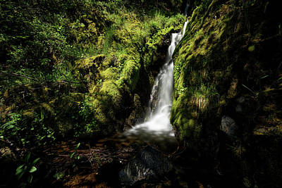 Photograph - Oregon Waterfall by Cathy Neth