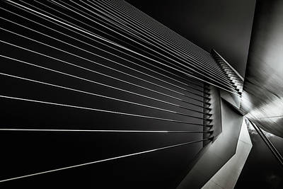 Rotterdam Photographs