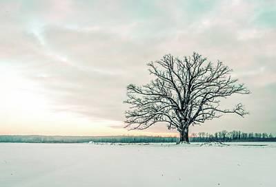 Photograph - Soft Winter Sunset by Heath Cajandig