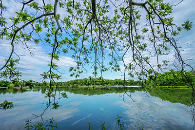 Photograph - Spring at Twin Lakes by Heath Cajandig