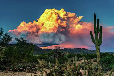 Photograph - Sunset Color Bomb by Joseph Plotz