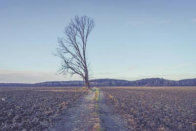 Photograph - Unbroken by Heath Cajandig