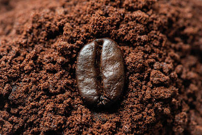 Photograph - Coffee bean on ground coffee close up view by Philippe Lejeanvre
