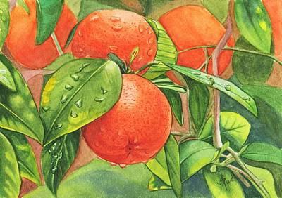 Painting - Fresh Oranges by Swati Singh