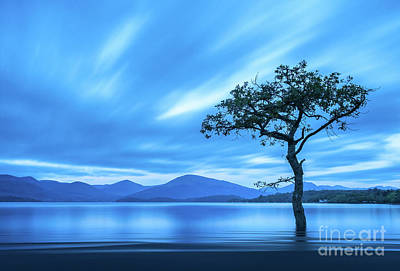 Loch Lomond Photographs