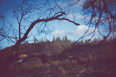 Photograph - Nature's Frame by Saroum Giroux