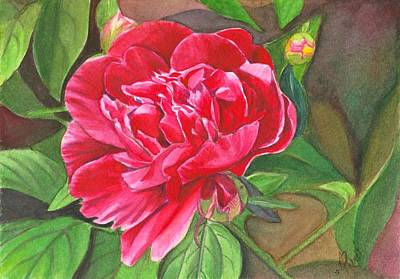 Painting - Peony in the garden by Swati Singh
