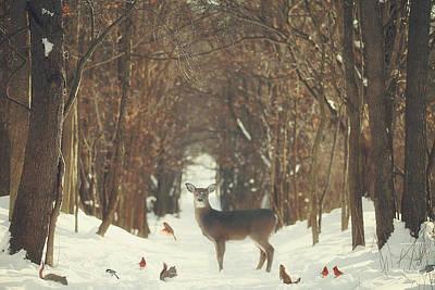 Red Deer Art