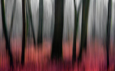Impressionistic Photographs