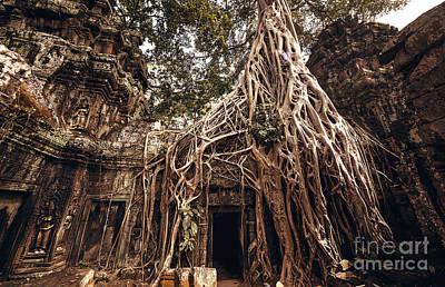 Cambodian Photographs