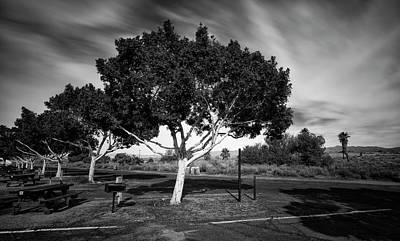 Salton Photographs