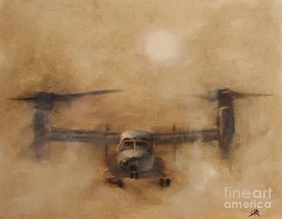 Osprey Paintings