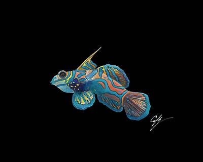 Mandarinfish Paintings
