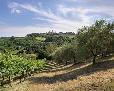 Photograph - Montepulciano, Italy by Thom Photography