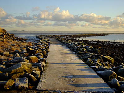 Photograph - Cold Winter Path by Nigel Cameron