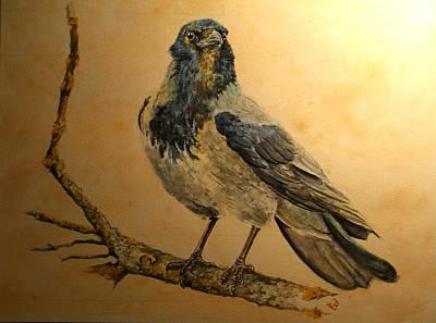 Hooded Crow Paintings