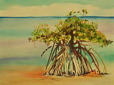 Mangrove Trees Paintings