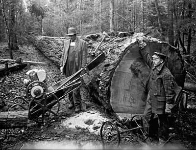 Logging Industry Photographs
