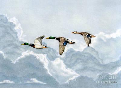 Sky Original Artwork