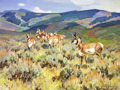 Wildlife Prairie Park Paintings