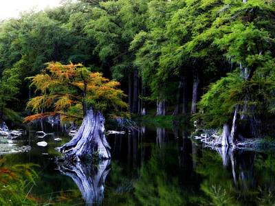 Photograph - On The Blanco River by Alicia R Paparo