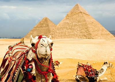 Ancient Egypt Photographs