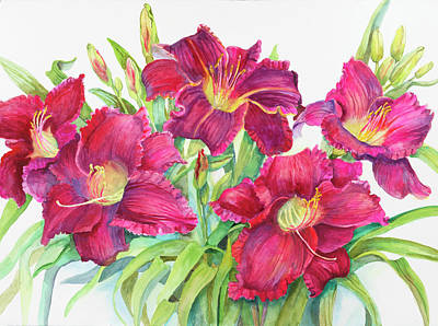 Daylily Paintings
