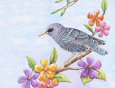 Starlings Paintings