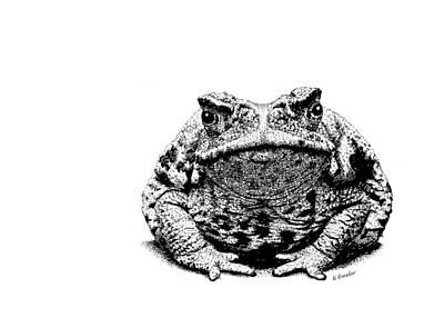 Toad Mixed Media