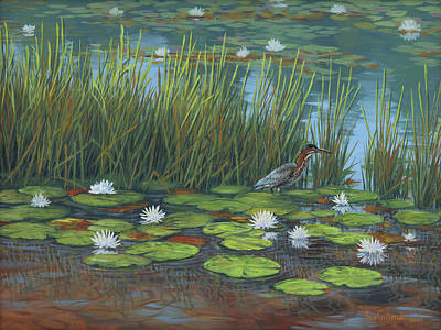 Painting - Green Heron by Guy Crittenden