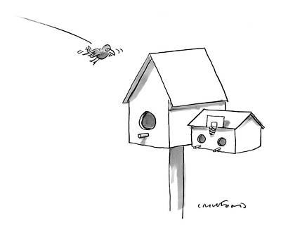 Birdhouse Drawings