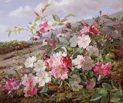 Eglantine Paintings