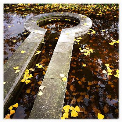 Autumnal Wall Art