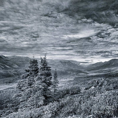 Monochrome Landscapes Wall Art