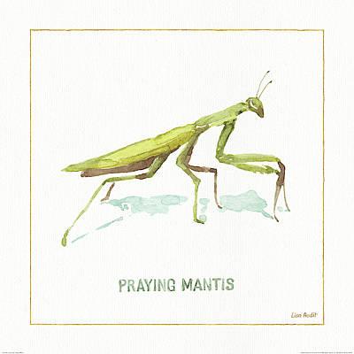 Praying Mantis Paintings