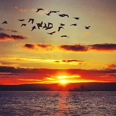 Designs Similar to Orkney's Sunset - Scotland