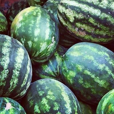 Watermelon Wall Art