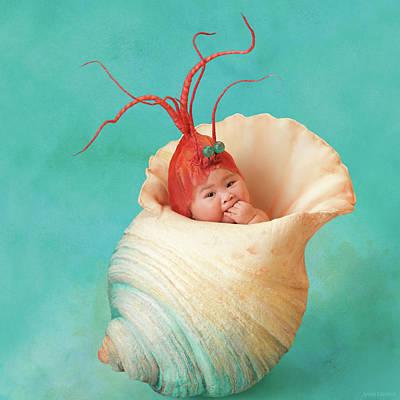 Shrimping Photographs
