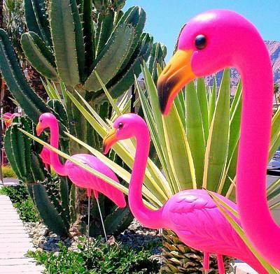 Plastic Flamingo Art
