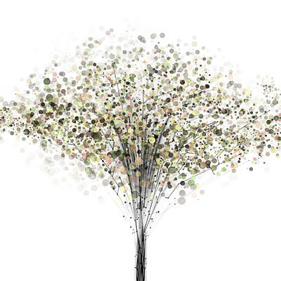 Tree Silhouette Photographs