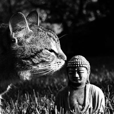 Buddhist Photographs