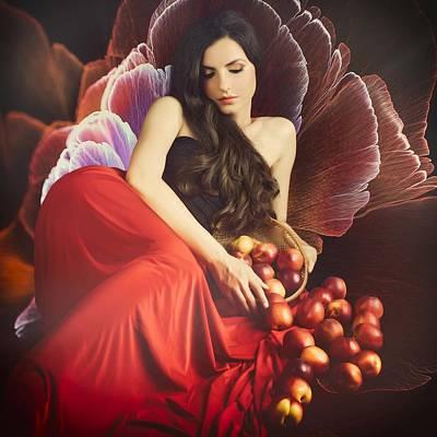 Passion Fruit Flower Photographs
