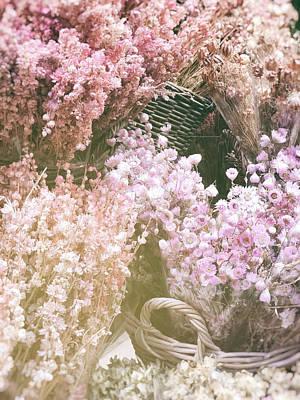 Designs Similar to Amsterdam Pink Flowers