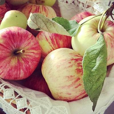 Apple Photograph - Apples by Nadezhda Karavaeva