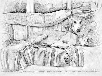 Pup Digital Art - # 13 Saluki Dog by Alan Armstrong