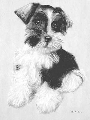 Scottish Terrier Drawing - # 16 Welsh Terrier Puppy by Alan Armstrong