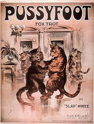 Drawing -  1920s Usa Cats Pussyfoot Fox Trot by The Advertising Archives