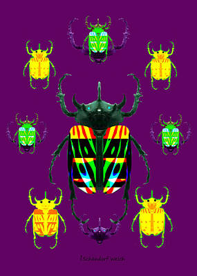 Painting -  677 -   Beetles  Deco  by Irmgard Schoendorf Welch